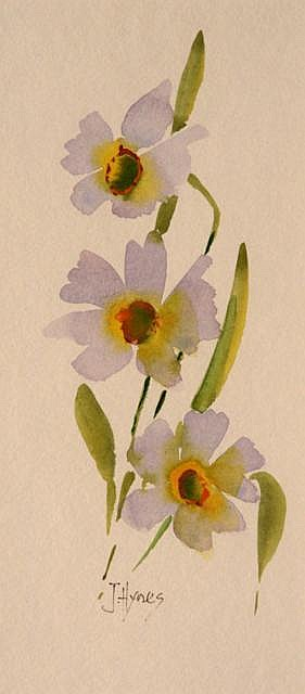 Joe Hynes Narcissi ll Watercolour 23 x 10 cms