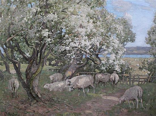 William MacBride (1856-1915) Sheep grazing beneath blossoming trees, 18 x 24in.