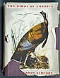 1941 Illustrated The Birds Of America By Audubon