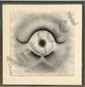 Rodolfo Abularach, The Eye, Lithograph