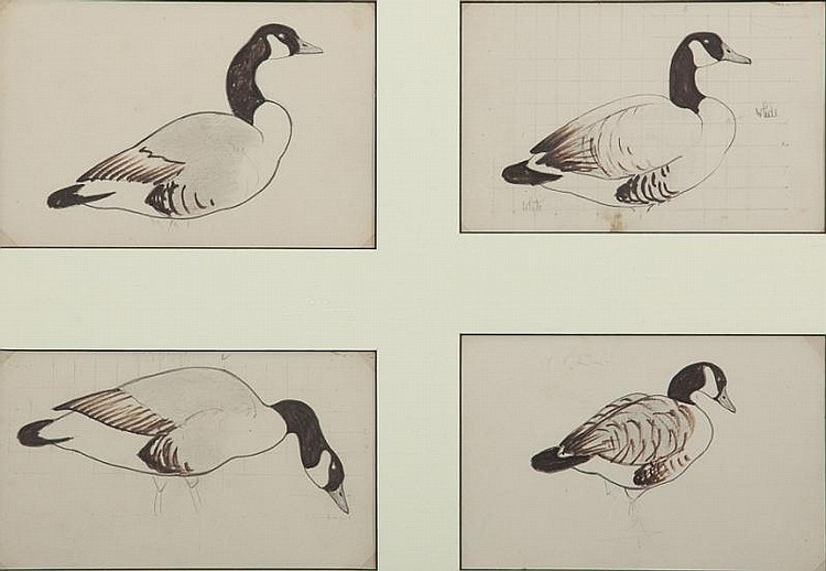 Richard E. Bishop (1887-1975)  Decoy Patterns