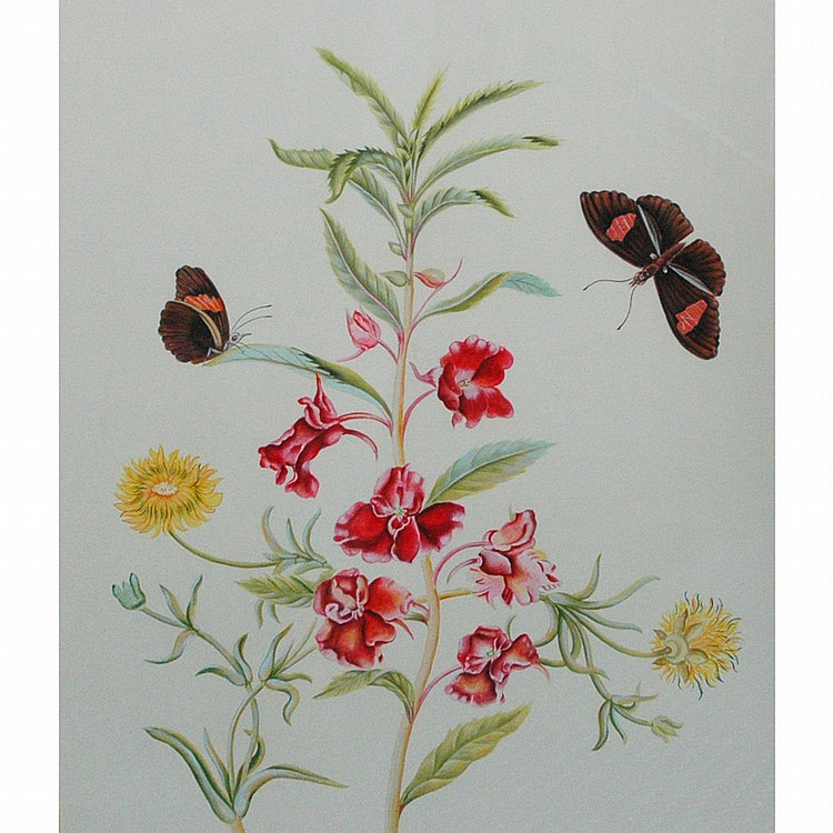 20th Century School Garden Flower with Butterflies Watercolor on cardboard Sight 23 x 19 inches