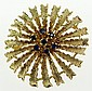 Vintage Lady's Fourteen Karat Yellow Gold Starburst Brooch Accented with Sapphires. Signed 14K. Good to Very Good Condition. Measures 1-1/2 Inches Diameter.. Weight: 7.1 Pennyweights; 11.0 Grams. Shipping $24.00