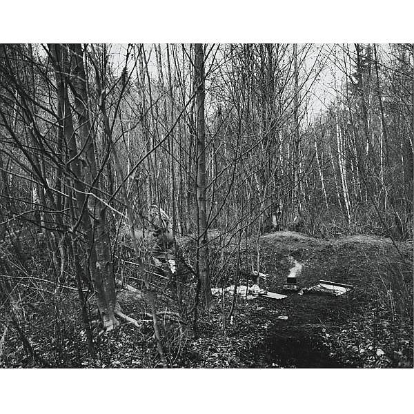 Jeff Wall , b. 1946 The Forest silver gelatin print