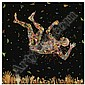 - Fred Tomaselli , b. 1956 Expecting to Fly   photocollage, leaves, acrylic, gouache, and resin on wood panel     , Fred Tomaselli, Click for value