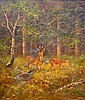 George Majewicz Deer in Forest Clearing